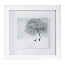 تابلو عکس سیب طرح از سکوت لذت ببر کد 147043 سایز (free)