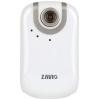 دوربین تحت شبکه زاویو مدل اف 3000