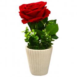 گلدان به همراه گل مصنوعی شیانچی طرح گل رز (سفید)