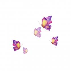 استیکر دیواری طرح Butterfly In Mirror