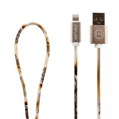 کابل تبدیل USB به لایتنینگ مدل Graffiti AP 17 به طول 1 متر